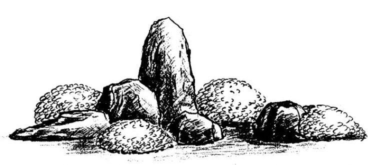 Stenene i den japanske have