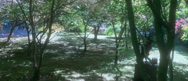 Åbne haver i Horsens-området