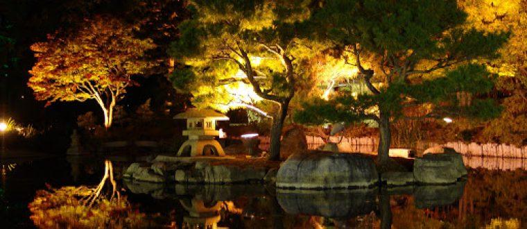 Lys i den japanske have