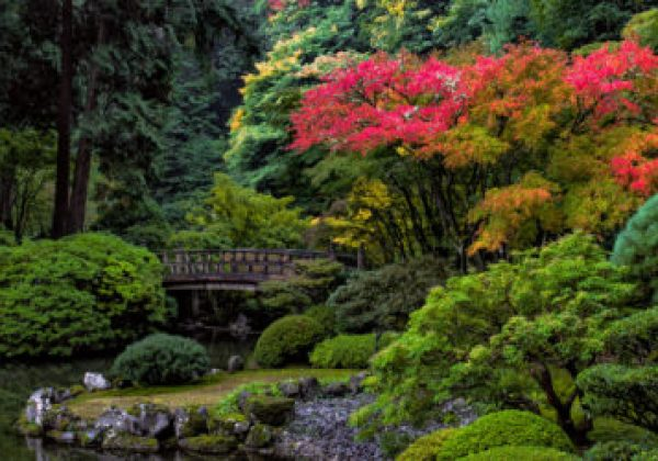 2018 International Japanese Garden Conference