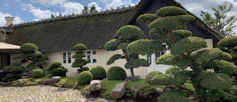 Åbne haver på Fyn
